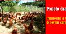 projeto_granja
